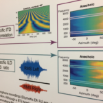 Acoustic analysis of binaural recordings